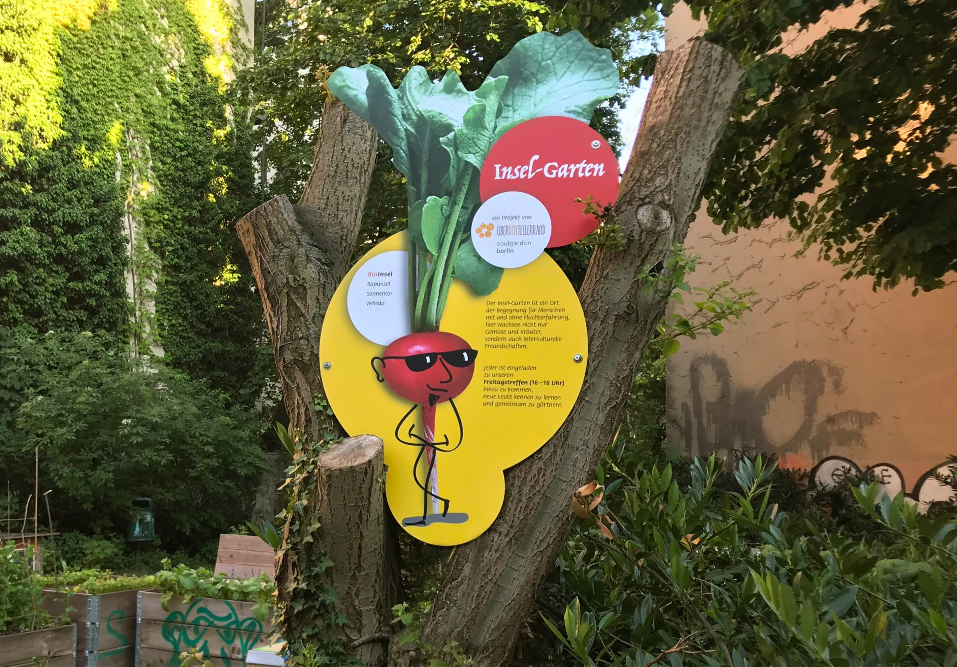 Aufsteller: illustriertes Gemüse macht Werbung für den Inselgarten - Typoly